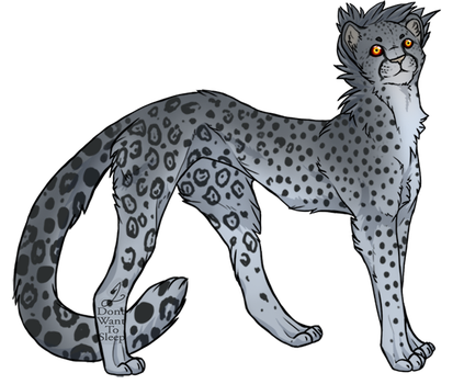 Maltese Cheetah by IDontWantToSleep