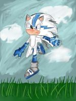 Shift the Hedgehog - Character Bio by grimlock1997