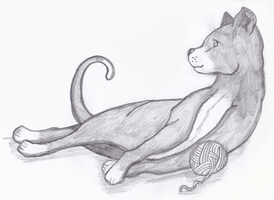 Traditional Drawing- Cat with a ball of wool by Tumbling-Star