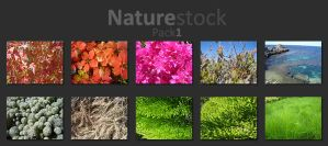 Naturestock Pack1 by AlbinoAsian