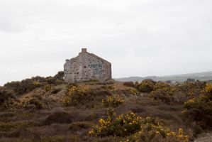 Cornish mine-14 by Random-Acts-Stock