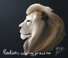 Realistic coloring practise by Bimmerd