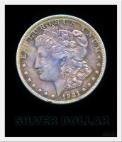 Silver Dollar 1921 by eccoarts