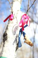 let's decorate the birch by FreedomeSoul88