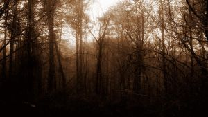 BlairWitch by 19NathanIan98