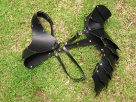 Banded Leather Half-Cuirass and Shoulder Guard by renegadecow