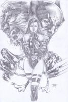 Psylocke, Sabertooth and Wolverine by edtadeo