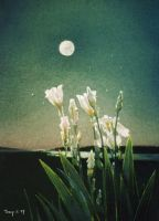 Irises in Moonlight by hank1