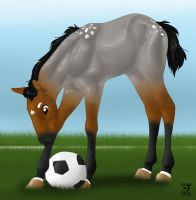 Little Big Soccer Star by inglorious-vikings