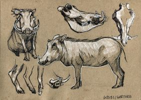 Warthog - 100animals100days by wolf-minori