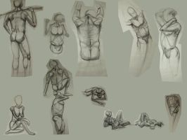 Life Drawing 1 - Construction by R3dF0x