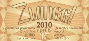 zwingg flyer I. by tmt