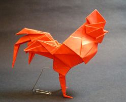 Rooster by guspath