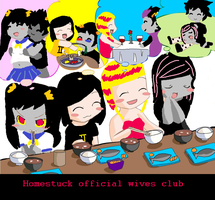 Official Homestuck Wives by Gamzeeswaifu