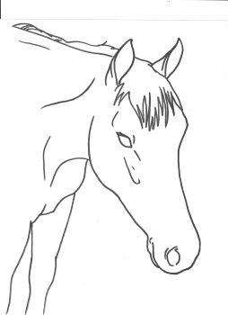 Horse Head 1 by Allicorn