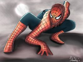 Spider-man by AndreCnJ