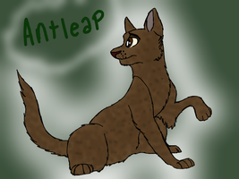 Antleap by mistyfeather2832