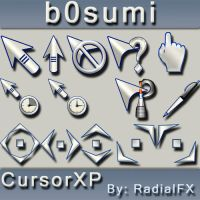 b0sumi by rautry