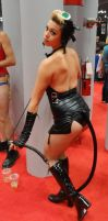 NYCC2013 Catwoman B by zer0guard