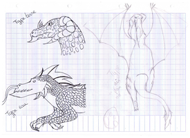 .:sketchs:. Dragons by licorneor
