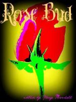 rose bud by staceycole