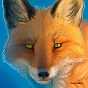 Fox Icon by maryquiZe