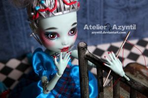 Monster High: Adventures of Threadarella Frankie by Azyntil