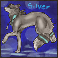 Silver by starbars