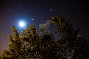 Sky at night by CryogenicCactus