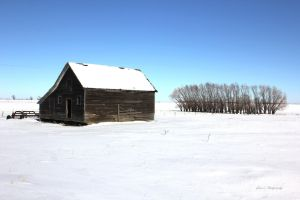 Winter On An Old Farm by geiersphotos