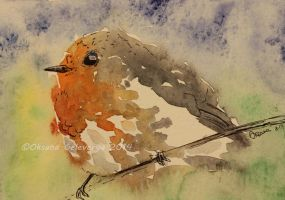 Watercolor and Ink #4 -European Robin - Bird by Oksana007