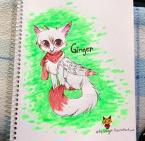Ginger the cat drawn in paper by htfginger