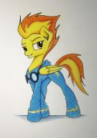 Captain of the Wonderbolts by Pajaga