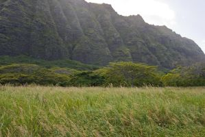 Hawaii Eastern Shore 2 by megamandos