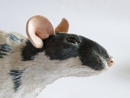 Rat Sculpture Close Up by philosophyfox