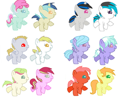 Pony Ship Adopts by LittleLace