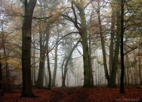 Whippendell mist . by 999999999a
