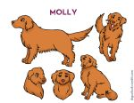 Molly Character Sheet by Aura0190