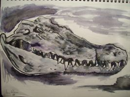 Completed Crocodile Skull 1 by McMuffinNinjaFluffer