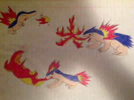 Cyndaquil, Quilava and Thyphlosion by TheRandomBoy