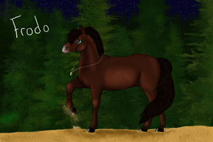 Frodo Baggins Horse Edition by SynxEnq
