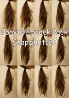 Ponytail Stock Pack by SnapShot120