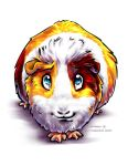 Guinea-Pig 2 by Fany001