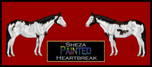 PD Sheza Painted Heartbreak-PT by painted-cowgirl
