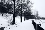 Winter in the park by ult1mate