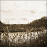 Don Valley Brick Works by saamhashemi
