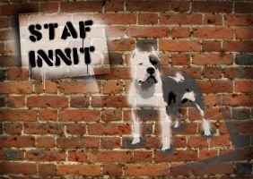Staf Innit by hamsher