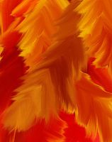 feathers by furryomnivore