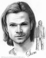 JIB5 ArtProject: Sam by Sillie