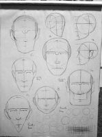 Head shapes! by ZombieWil
